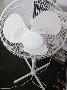 White Stand Fan