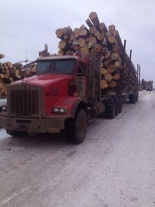 2013 Kenworth T800 Tri Drive Logging truck Edmonton Edmonton Area image 3