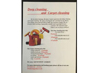 DEEP CLEANING and CARPET CLEANING