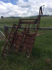 Cattle Head Bale Glencoe Glen Innes Area Preview