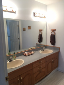 Awesome Bathroom Cabinets And Sinks