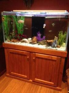 4'x2'x2' Aquarium with sump Modbury Heights Tea Tree Gully Area Preview