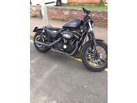 Harley Davidson 883 Iron, 2010