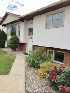 Beautiful updated 3 bdrm + 2 bathrm house with garage + yard