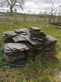 Roof tiles from old farmhouse for sale