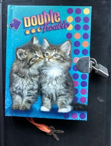 """Double Trouble Secret Diary with Lock 7"""" Journal Notebook 100 Double Sided Page"""