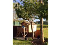 Fabulous kids treehouse
