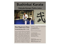 Beginner and Regular Classes in Authentic Karate Jutsu