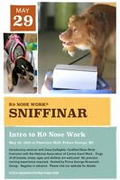 """Intro to K9 Nose Work """"Sniffinar"""""""