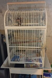 selling bird cage