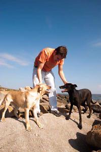 DOGWALKER IN BONDI AND MORE Bondi Beach Eastern Suburbs Preview