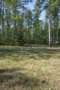 3.71 Acres for sale only minutes West of Sylvan Lake on 11A