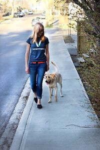Student Dog Walkers and Pet Sitting ( as seen on CBC!)