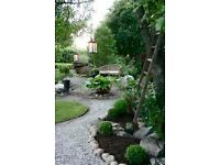 Experienced Gardner will care for your garden!