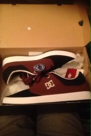 DC trainers brand new