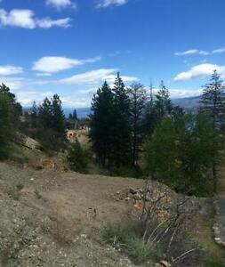 Great View Lot in Peachland