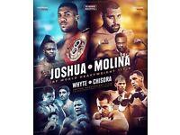 2 x *LOWER TIER* Anthony Joshua vs Eric Molina Tickets