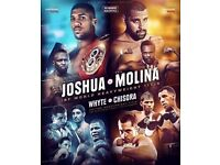 1 or 2 Anthony Joshua V Eric Molina Boxing Tickets Floor seats Block C row B !! Manchester Arena