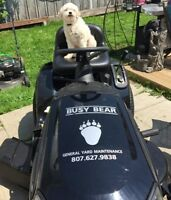 PET WASTE & SPRING CLEANING / LAWN CUTS / RENTAL UNIT CLEANING /