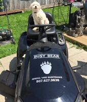 PET WASTE / SPRING & YARD CLEANING /Lawns cut / dump runs