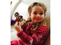 After school and holiday nanny required for lovely 4 year old girl in Primrose Hill/Camden