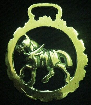 WHEATSHEAF IN OVAL FRAME Vintage Horse Harness Brass from England WOW YOUR WALLS