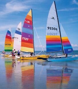 Wanted: Hobie Cat or Nacra & Trailer - Good Condition