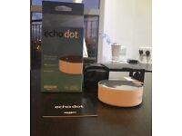 Echo dot (first generation)