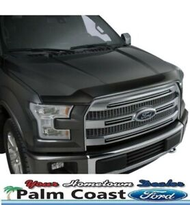 Bug deflector 2015 up F150.  Ford brand.