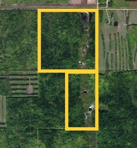 240 ACRES ALL TREED BACKING INTO CROWN LAND!