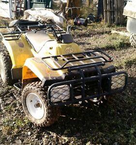 MFC250 quad for sale Prince George British Columbia image 2