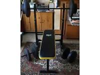 Everlast Folding Weight Bench