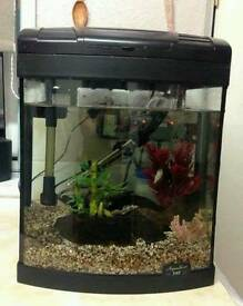 Aqua One 40ltr Fish Tank, Pump, Filter, Heater & Accessories