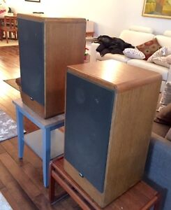 Canton CT1000 high end speakers cost $2,500 Mint