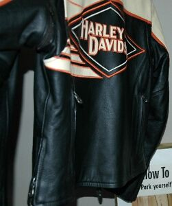 Ladies Leather Harley Davidson Riding Jacket One Of A Kind! London Ontario image 9