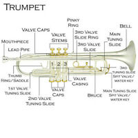 Brass Instrument Lessons - Trumpet Lessons, Trombone Lessons