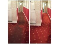 Professional deep carpet / rug cleaning . End of tenancy cleaning