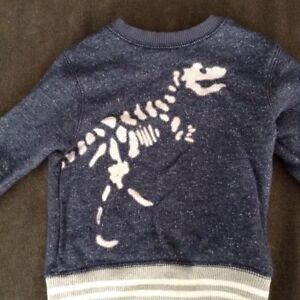 Lot of Boys' Tops sizes 18-24 months