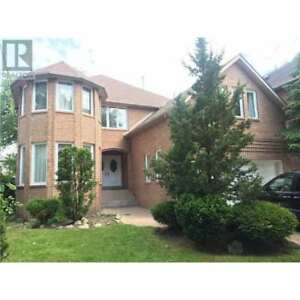2 STOREY FURN. 5 + 1 BDRM BASEMENT APT, WILLOWDALE