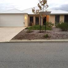 Beautifully presented 4x2 house in quiet street Aubin Grove Cockburn Area Preview