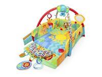 Bright Starts Swingin Safari baby play place
