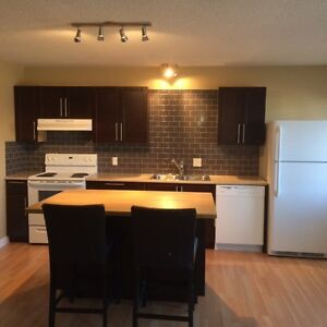 Completely renovated Bachelor suite  3705-34A Avenue