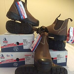 Steel Blue Steel Cap Boots New With Tags Busselton Busselton Area Preview