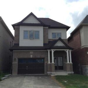 Full House in Green Ln and Leslie For Lease $1800