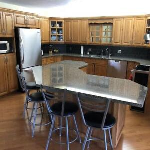 granite countertops - right slab at right price