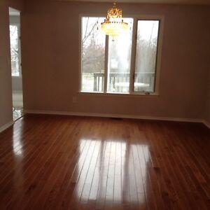 Bayridge/Lincoln Drive area room $500 Kingston Kingston Area image 3
