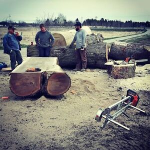 Custom Portable Sawmill Service. Great Rates, Quality Sawmilling Kitchener / Waterloo Kitchener Area image 4