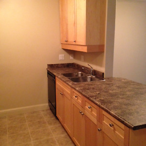 Beautiful clean safe condo and FREE GROCERIES