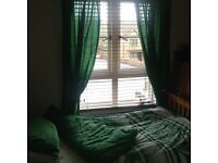 Kids Celtic bedding/curtains and accessories