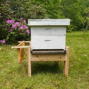 beehive stand made of cedar, bee keeping supplies, apiary, bee hive